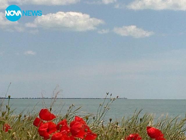 Снимки от Бургаския залив