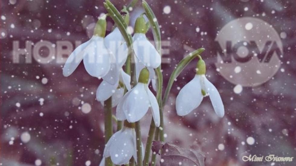 Пролет и зима в едно