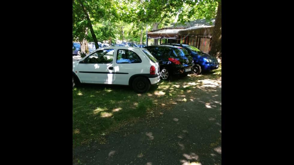 Паркиране в тревни площи