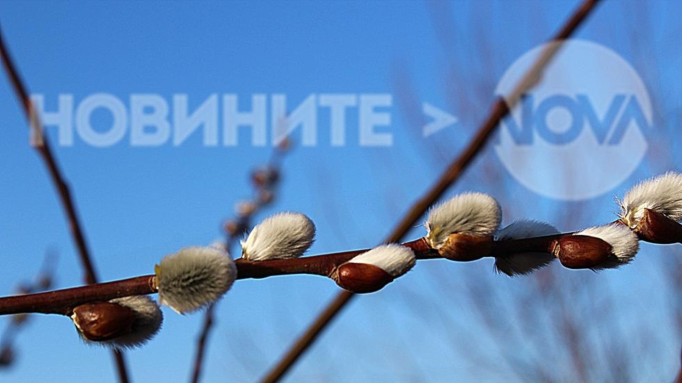 Пролетта е вече тук