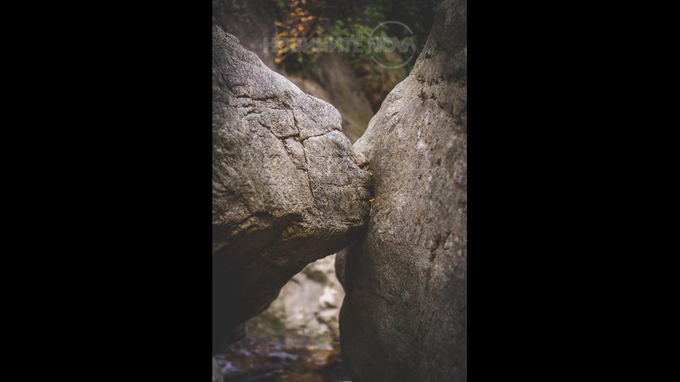 Когато природата целува!