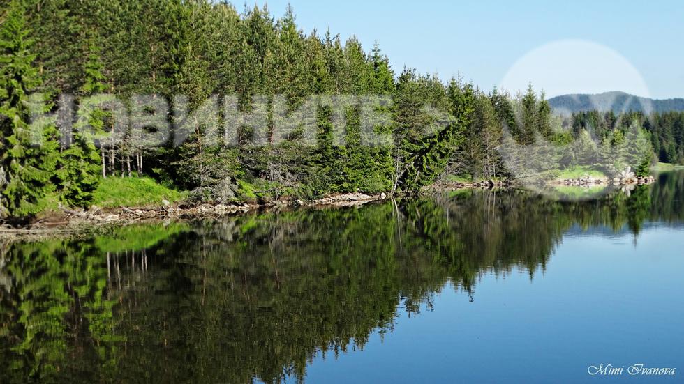 Огледални отражения в язовир Широка поляна