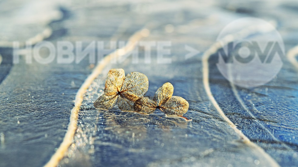 Ледени пързалки