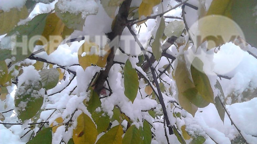 Първи сняг в Монтана