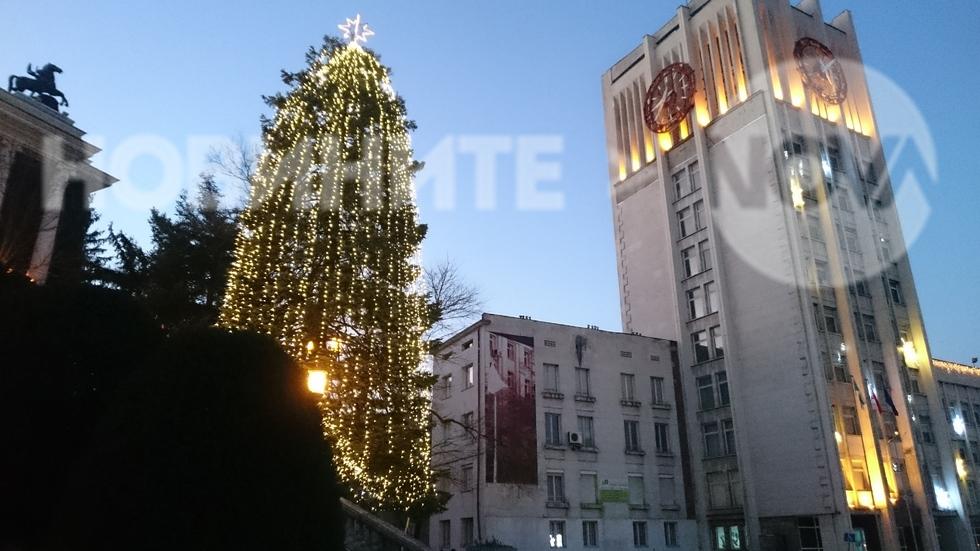 Коледната елха в Габрово