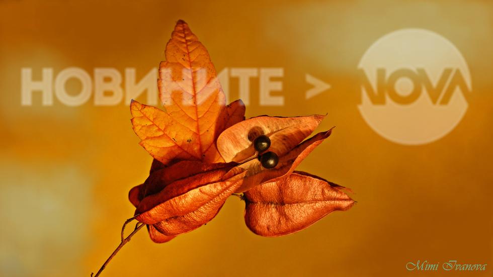 В топлите цветове на късната есен..