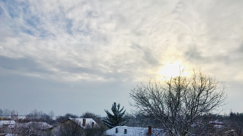Зимно утро