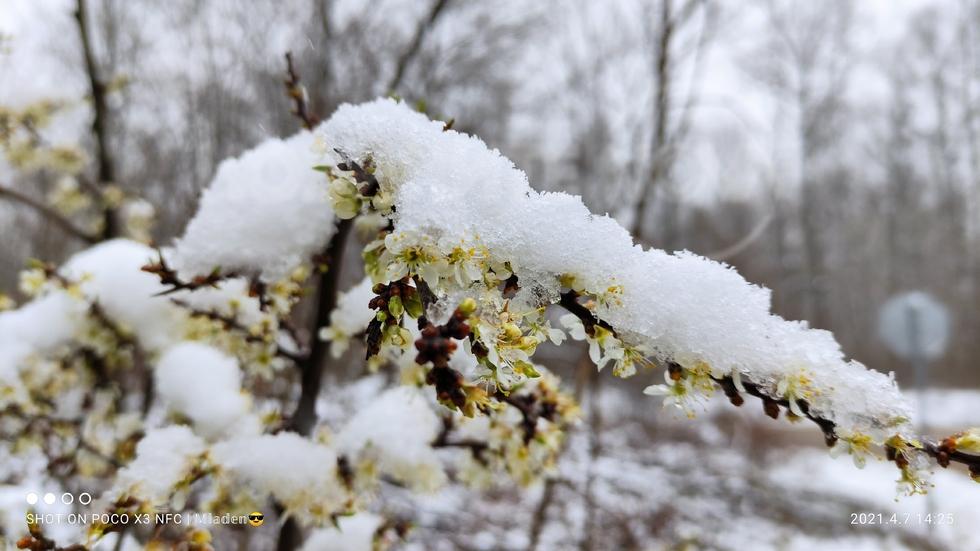 Зима през април