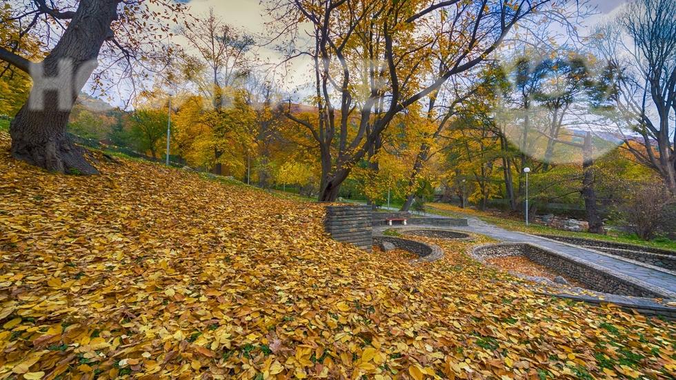 Есенно