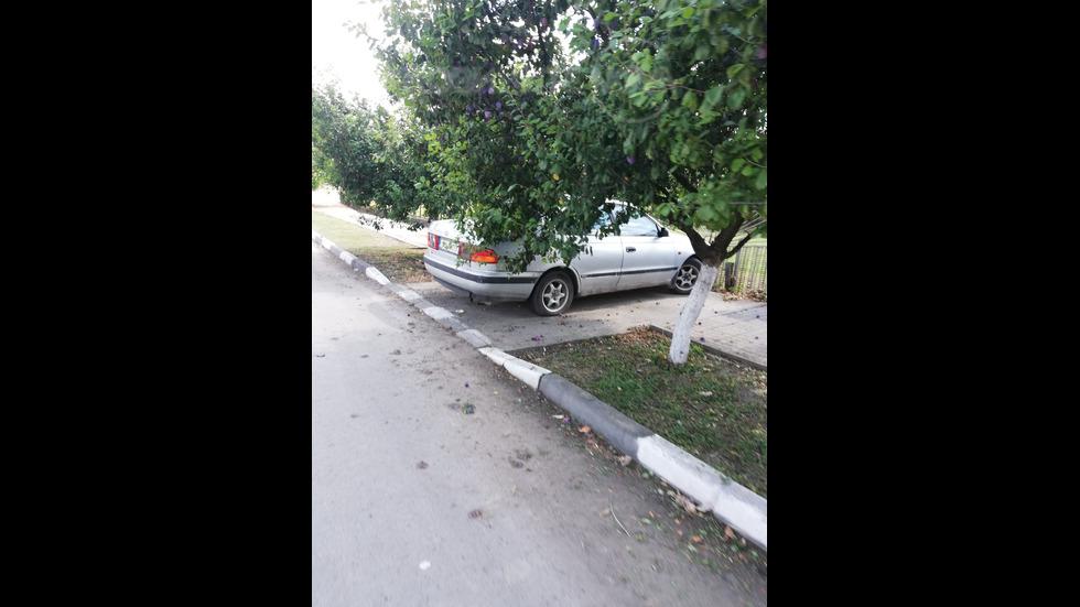 Паркирането в град Сливо поле