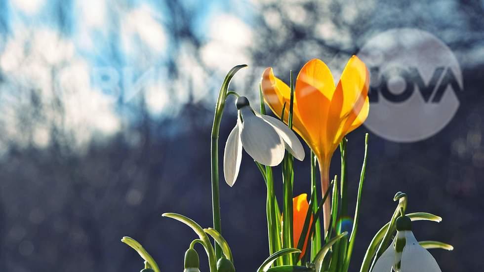Пролетта се усеща