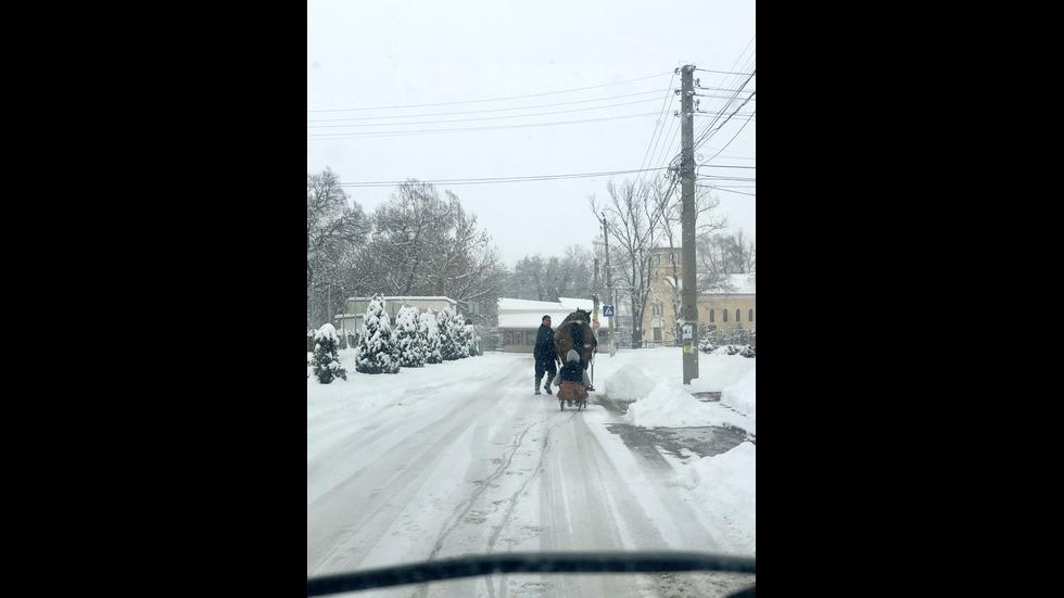 Снежен ден