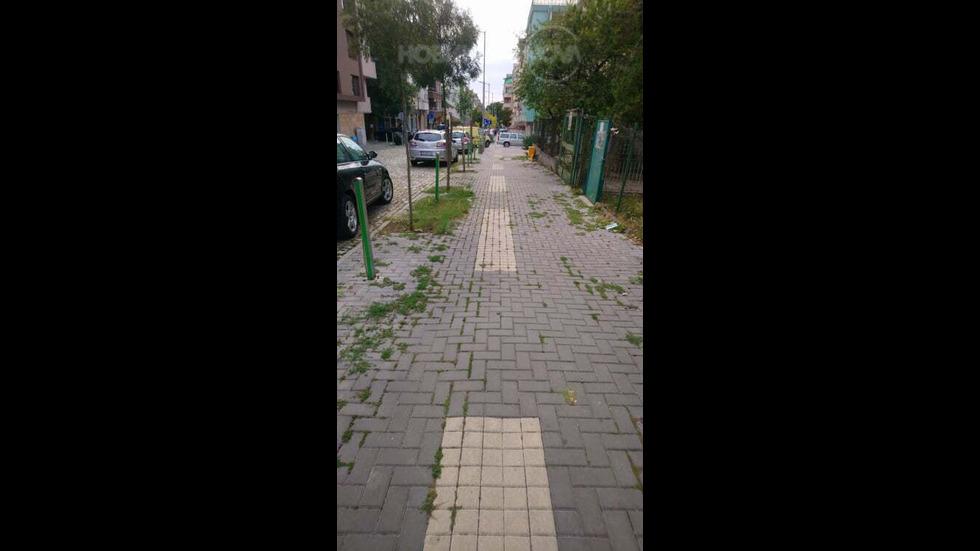 Тротоари или джунгла