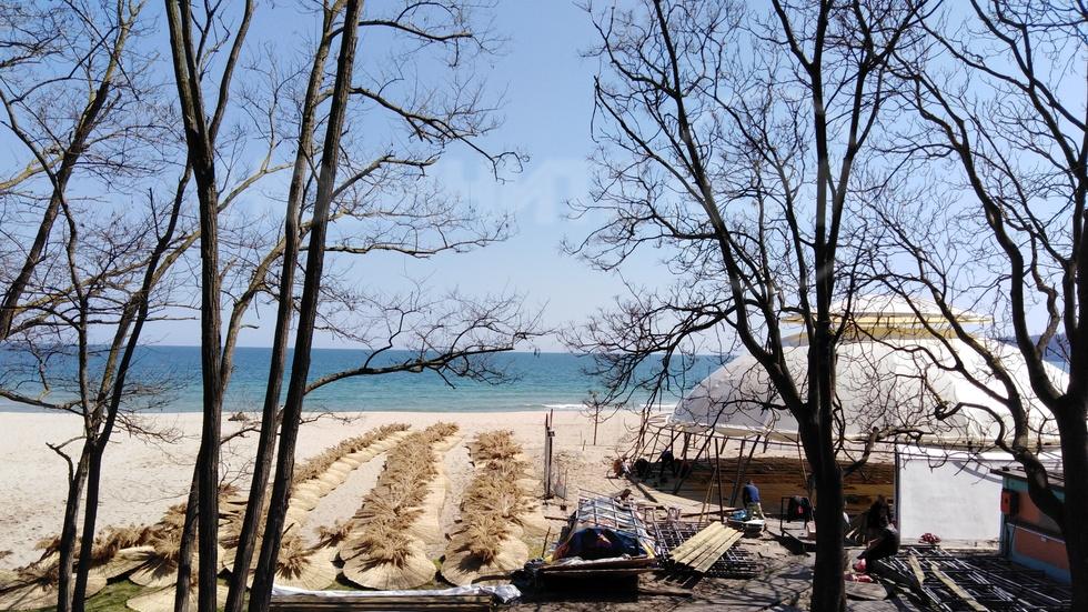 Плажа