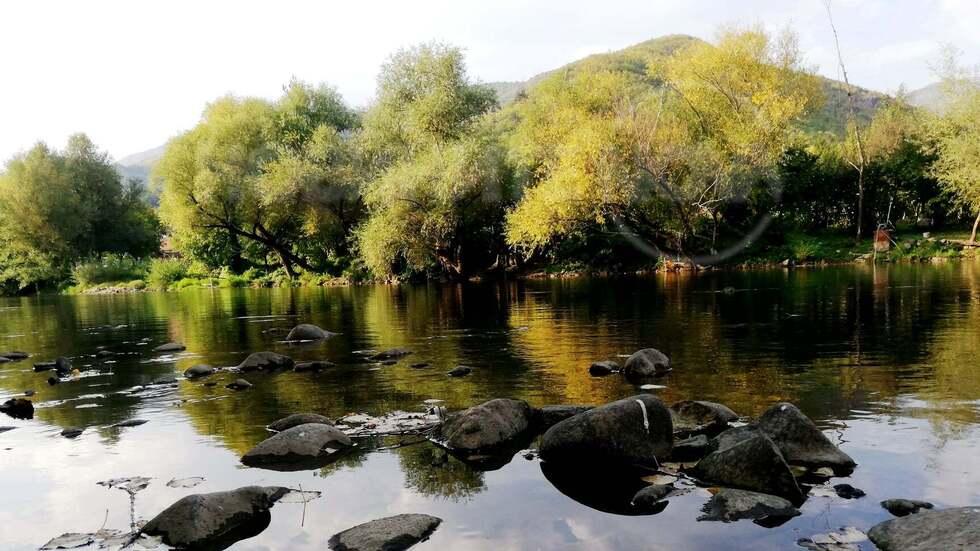 Есен край река Искър - Зверино