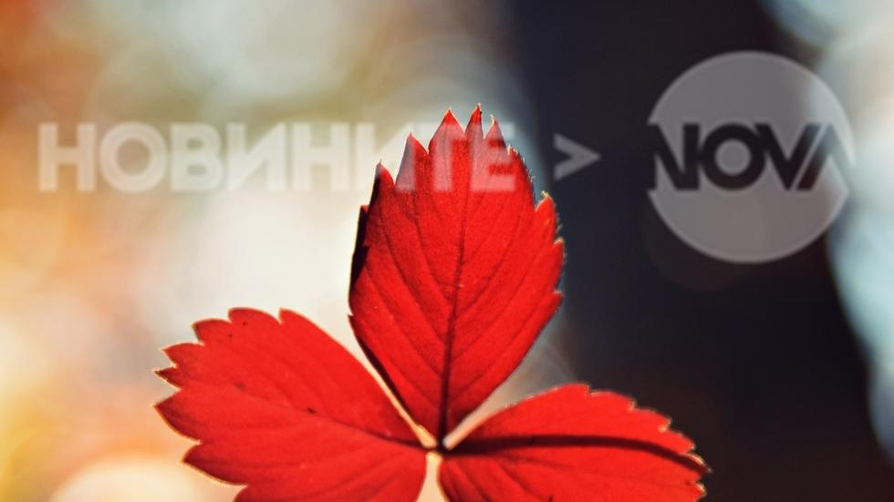 Есента в гора