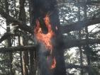 Огнената стихия над Банско е изцяло овладяна