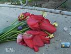 Ден на траур в Симеоновград