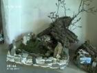 Мъж сътворява произведения на изкуството от дънери, корени, мъхове и камъни