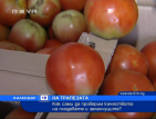 Как сами да проверим качеството на плодовете и зеленчуците?