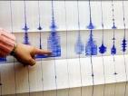 Силно земетресение бе усетено в индийската столица