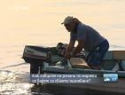 Ловците на рапани по морето се борят за своето оцеляване