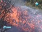 Пожарът край Вакарел е ограничен на площ около 4500 декара