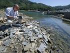 Японци върнали 50 милиона долара намерени в развалините от труса