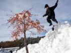 Неочаквана снежна виелица парализира Североизточните щати