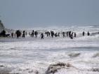 Силно земетресение край бреговете на Мексико