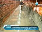 Опасност от наводнения в много райони заради проливните дъждове в Италия