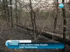 Голям горски пожар бушува край Панагюрище