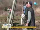 """След протестите и забраните: Ледена баня вместо """"тричане"""" на кучета"""