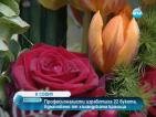 Професионалисти изработиха 22 букета, вдъхновени от холандската кралица