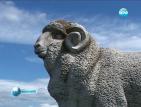 Паметникът на коча Цанко напомня за празника на овчарите на Гергьовден