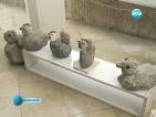 Фалирал бизнесмен прави уникални каменни пластики