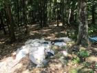 Откриха убит изчезналия лихвар от Русе