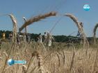 Неолитна пластика откриха край Враца