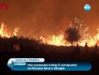 Пожарът в Испания е овладян