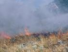Голям пожар бушува край Благоевград