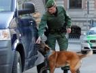 Граничарите в Италия използват кучета, надушващи пари в брой