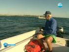 Ловът на акули по родното Черноморие изисква дълга и скъпа подготовка