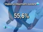 1/2 от българите над 15-годишна възраст са безработни