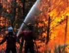 Португалия поиска помощ от Европа за справяне с пожарите