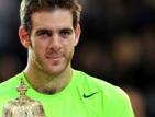 Дел Потро спря Федерер на финала в Базел