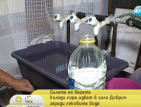 Хиляди търсят изцеление в лековита вода