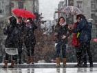 Страхове в Гърция от 40% безработица
