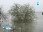 Нивото на Дунав ще се покачва през цялата седмица