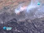 Пламнаха 50 декара борова гора над Банско