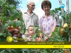 Внуци назаем учат занаяти на село
